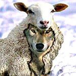 loup-ou-agneau